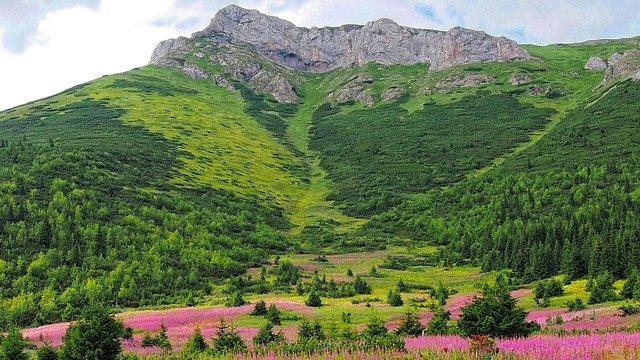 zelené Tatry